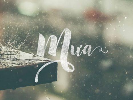 Mơ thấy mưa là điềm báo lành hay dữ? Đánh con gì chính xác?