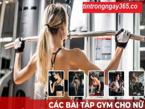 Cách tập Gym cơ bản nhất cho phụ Nữ mới bắt đầu